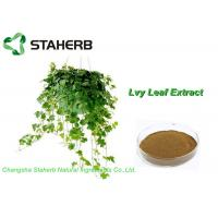 Organic Ivy Leaf Extract, Hedera Helix Extract 10% Hederacoside C Powder Brown Yellow Manufactures