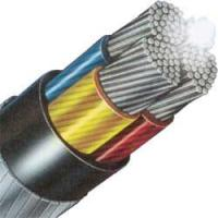 China 0.6/1kV 3 core Insulated pure copper xlpe power cables with PVC jacket on sale