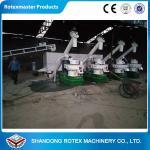 Six Generation Wood Pellet Equipment 2-3 Tons Per Hour Biomass Pellet Production Line Manufactures