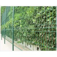 China selling wire mesh fence on sale