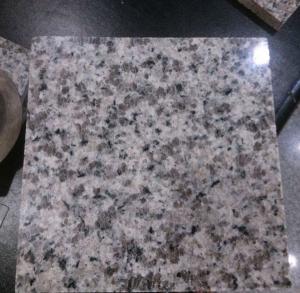 China paddy flower granite Manufactures