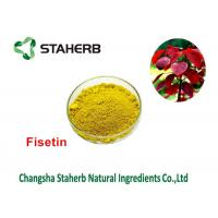 Quality Cotinus Coggygria Green Plant Extract Smoketree Extract Fisetin 50% - 95% for sale