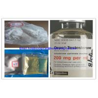 Muscle Growth Testosterone Steroid Hormone Enanthate Test Enanthate Powder Manufactures