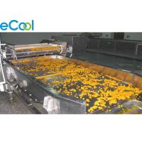 Freon Refrigeration Multipurpose Cold Storage For Vegetables And Fruits 3000 Tons Manufactures