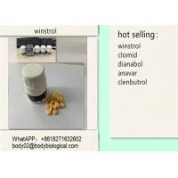 Oral Pills Injectable Anabolic Steroids Winstrol / Stanozolol For Body Muscle Gain Manufactures