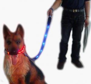 Green Flash Safty Nylon Dog Leash Manufactures