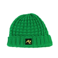 High Quality ACE Factory Price ODM OEM Solid Green Color Unisex Adjustable Custom Logo Beanies Knitted Cap Manufactures