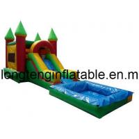 Inflatable Slide with Pool/Inflatable Water Slide /Inflatable Water /Inflatable Toy (LT-SL-0020) Manufactures