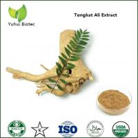 China tongkat ali extract,tongkat ali root extract 200 1,tongkat ali extract powder on sale