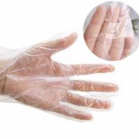 Food Grade Disposable PE Gloves Length 285 - 290mm Tear Proof Multi Color Manufactures