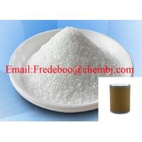 Local Anesthetic Pharmaceutical Grade 99% Purity Benzocaine CAS 94-09-7 Manufactures