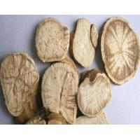 Radix Stephania tetrandra S Moore root slices dried and natural medical herb Fen fang ji Manufactures