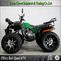 China Chinese Cheap 250CC Sport ATV Quad Bike with Mirror on sale