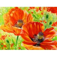 Oil Painting By Number 40x50cm Flower digital painting tutorials Manufactures