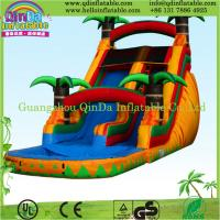 New design inflatable long slide/inflatable outdoor water slide Manufactures