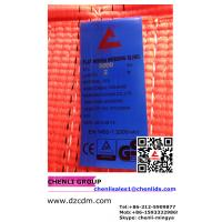 5:1 polyester webbing sling, EYE AND EYE TYPE, CE. Manufactures