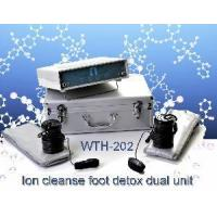 Detox Foot Cleanse Machine (WTH-202) Manufactures