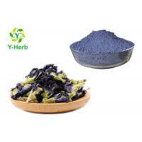 Dried Juice Tea Herbal Extract Powder Blue Butterfly Pea Flower Powder Food Pigment Manufactures