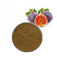 Lower Blood Pressure Fumaric Acid Ficin Fig Fruit Powder Fig Extract Fig Powder Manufactures