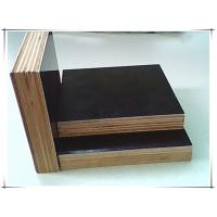 hardwood core plywood WBP  glue plywood for construction Manufactures