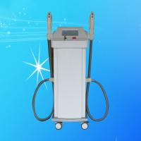 Painless No Scar Light Energy Elight IPL RF Professional Beauty System for beauty salon Manufactures