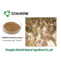 Fruitbody Phellinus Igniarius Extract Powder Polysaccharides 0.5%-30% Relive Pain Manufactures