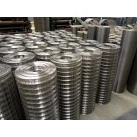 China 304 316SS Square Welded Wire Mesh Rolls,1/2''×1/2''welded wire mesh factory price on sale
