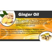 Quality Supercritical Fluid Extraction Ginger extract Ginger Oil Plant Extract Ginger for sale