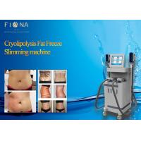 4 Handles Cryolipolysis Slimming Machine Fat Freezing With 5 Inch Touch Screen Manufactures