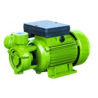 Electric Water Pumps For Houses , Vortex Water Pump For Hotel Using 0.75HP Manufactures