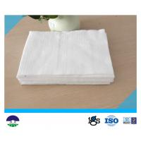 Polester Filament Geotextile Drainage Fabric High Strength White Manufactures