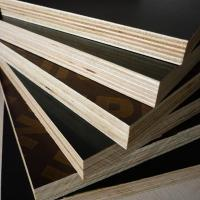 China ACEALL WBP Poplar Core Shuttering Film Faced Plywood Building Materials Manufactures