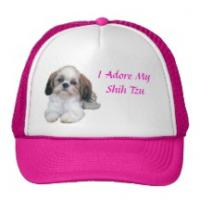 Cool Fashion Knitted Dog Hat Manufactures