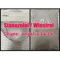 Stanozolol / Winstrol Is Widely Used Oral Anabolic Steroids Pharmaceutical Material powder Manufactures