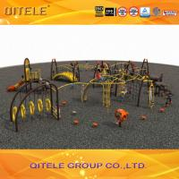 Professional Kids Outdoor Gym Equipment , Climbing Playground Equipment For School Manufactures