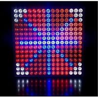 45 Watts Grow Light Hydroponic LED Grow Light 35W Square Panel With Color Red & Blue Manufactures