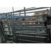 cattle crushes Manufactures