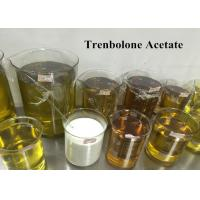 99% Trenbolone Steroid Muscle Gain Tren Ace For Injection , CAS 10161-34-9 Manufactures