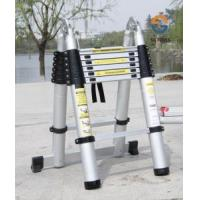 China Telescopic Articulated Ladder, Extension Ladder (SG-LE106) on sale