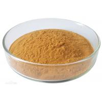 Quality Green Tea Extract Antioxidant Dietary Supplement Catechin 50-98% Powder for sale