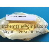 China Trenbolone Enanthate Trenbolone Acetate Powder Tren Ace CAS 10161-34-9 99.9% muscle growth on sale