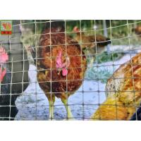 Polypropylene Plastic Poultry Netting , Garden Plastic Mesh Fencing 30 M / Roll Manufactures