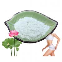 China High Purity Weight Loss Additives Lotus Leaf Extract Nuciferine 10% 50% 98% on sale