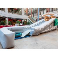 Exciting Inflatable Snow Toboggan Ride On Slip N Slide For Kids / Adults Manufactures