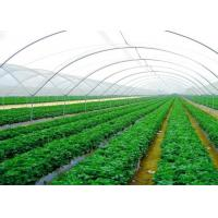 High Efficiency Customized Insect Mesh Netting 80% Windbreak Value Manufactures