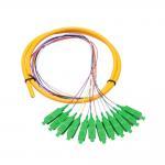 12 Core SC APC single mode distribution  Fiber Optic Pigtail For Telecommunication Networks Manufactures