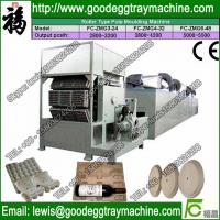 China Automatic Paper Pulp Eggs tray Machine CE Low Price on sale