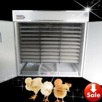 Incubator Hatching Automatic Chicken Incubator for 5280 Eggs (YZITE-24) Manufactures