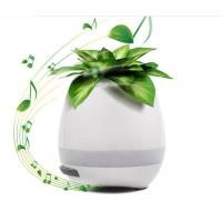 Music Illuminated Flower Pots With LED Light And Bluetooth For Christmas Gift Manufactures