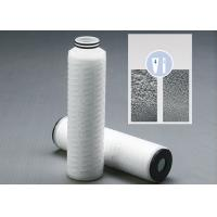 Asymmetric Polysulfone PS Membrane Pleated Filter Cartridge Filter Vessels For Pre Filter Pharmaceutical And Biological Manufactures